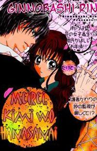 Meirei, Kimi o Hanasanai