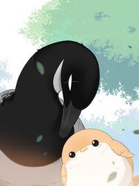 Southern Bird and Northern Bird