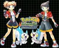 Pokémon Ranger Batonnage delete