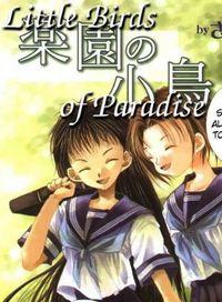 Little Birds of Paradise